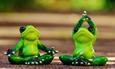 frogs-1030278_1280